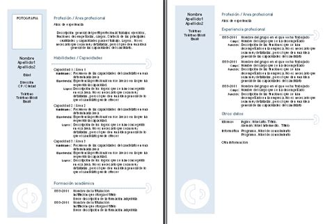 Ejemplo de curriculum vitae para rellenar jpg 798x541